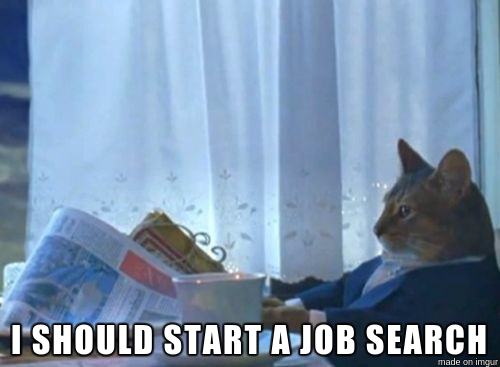 "Cat thinking ""I should start a job search"""